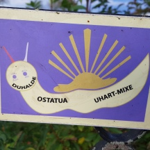 The Snail route we took on the Camino