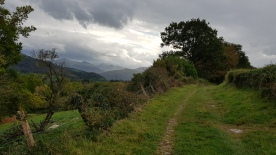 View to the Pyrenees