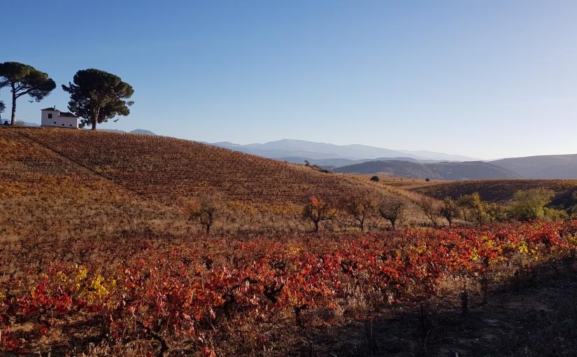 Camino Day 66 (Ponferrerada to Villafranca del Bierzo) 25K- #CAMINO#HIKING