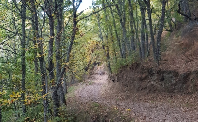 Camino Day 67 (Villafranca del Bierzo to O Cebreiro) 28K- #CAMINO#HIKING