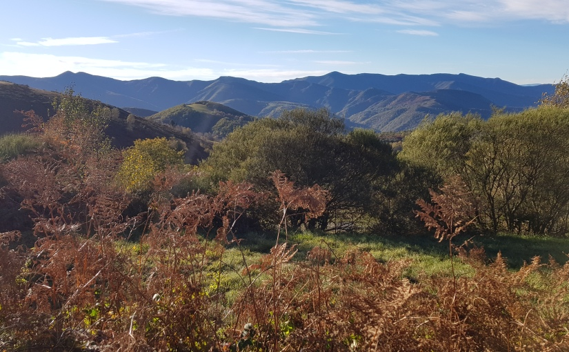 Camino Day 68 (O Cebreiro to Triacastela) 22K- #CAMINO #HIKING